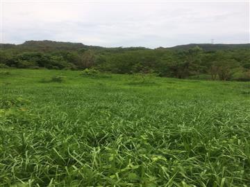 Fazendas no bairro Não Especificado na cidade de Rondonopolis