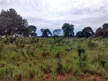 Fazendas no bairro Não Especificado na cidade de Apore