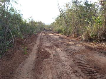 Fazendas no bairro Não Especificado na cidade de FIGUEIRÃO