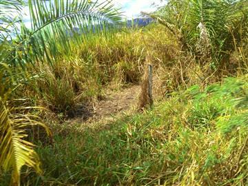 Fazendas no bairro Não Especificado na cidade de Bodoquena