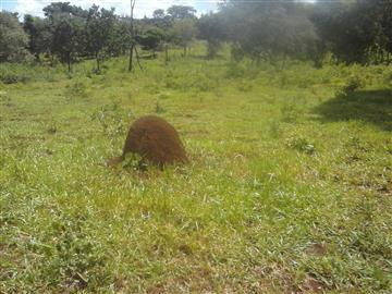 Fazendas no bairro Não Especificado na cidade de Jaraguari
