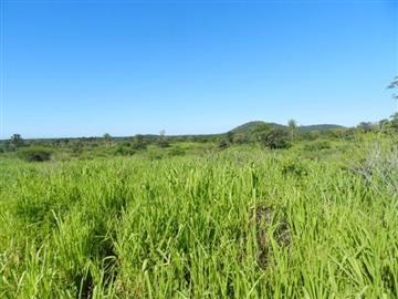 Fazendas no bairro Não Especificado na cidade de Corumba