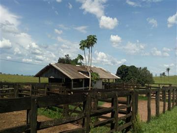 Fazendas no bairro Não Especificado na cidade de São Gabriel do Oeste