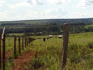 Fazendas Jaraguari