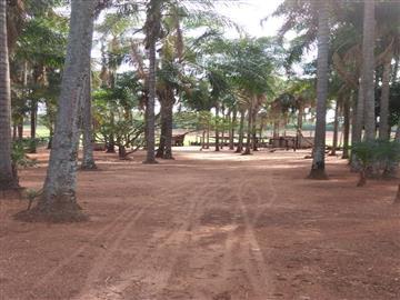 Fazendas Cassilandia