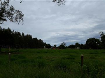 Fazendas Tres Lagoas