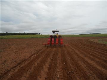 Fazendas Campo Grande