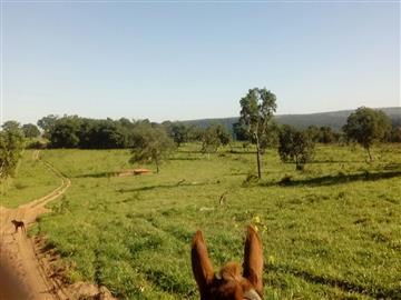 Fazendas FIGUEIRÃO