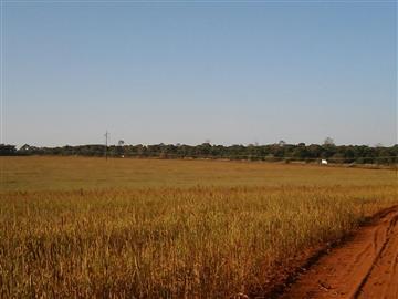 Fazendas São Gabriel do Oeste