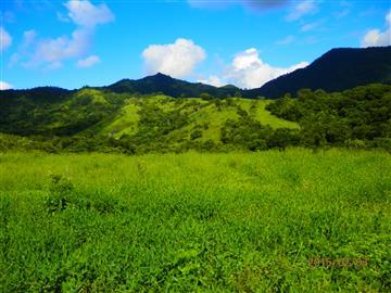 Fazendas  Cajati R$3.500.000,00