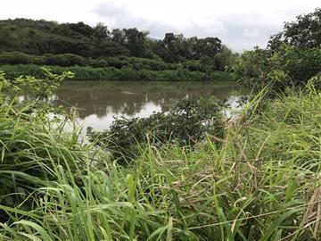 Terrenos  Juquia R$35.000,00