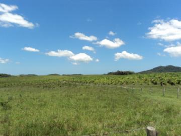 Fazendas  Iguape R$1.000,00