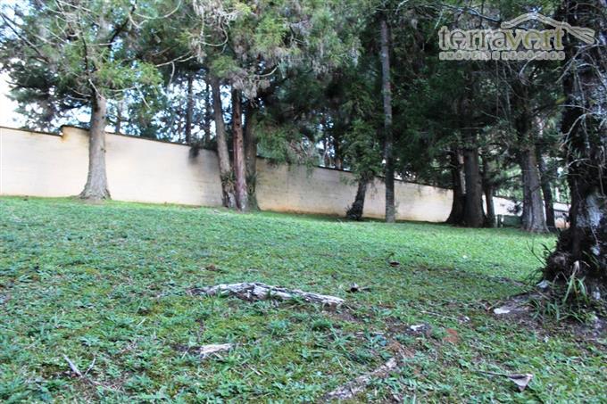 Terrenos em Monte Verde no bairro Aldeota