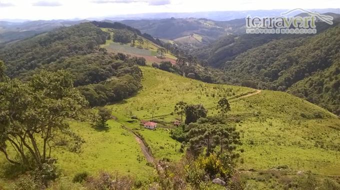 Fazendas em Camanducaia no bairro Nao Especificado