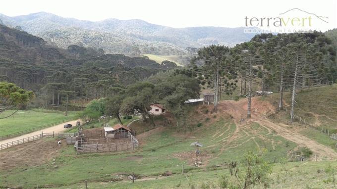 Fazendas em Camanducaia no bairro Não Especificado