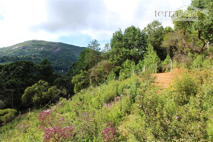 Terrenos em Monte Verde no bairro Jardim Monte Verde