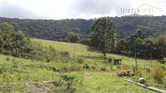 Sítios em Monte Verde no bairro Não Especificado