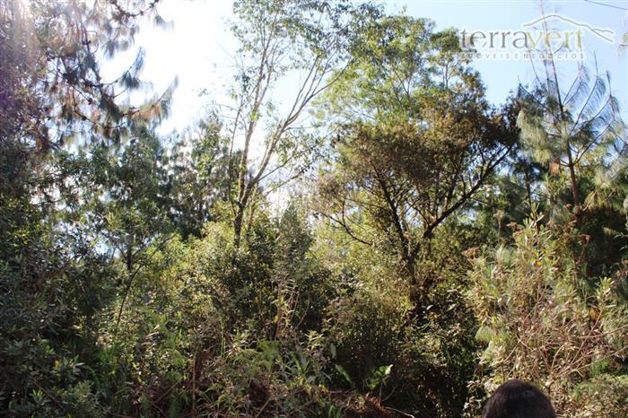Monte Verde | Terrenos em Jardim das Montanhas
