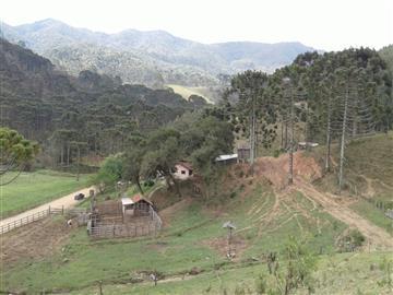Fazendas no bairro Não Especificado na cidade de Camanducaia