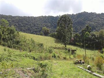 Sítios no bairro Não Especificado na cidade de Monte Verde