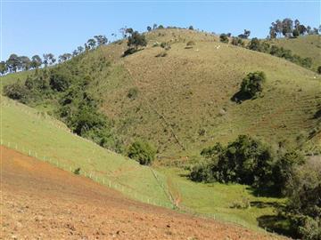 Fazendas Cambui Consulte-nos