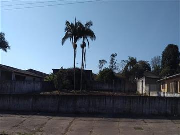 Terrenos Criciuma R$ 225.000,00