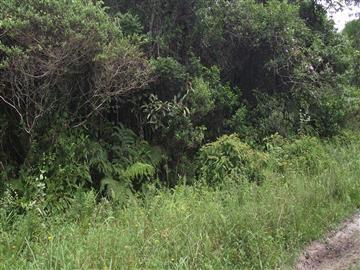 Itanhaem Parque alvorada 97