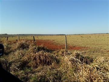 Zona Rural R$50.000,00 Asfalto na Frente da Fazenda