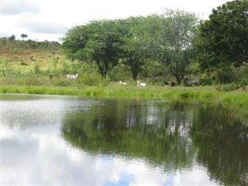 Fazendas Belo Campo