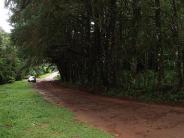 Terrenos  Monte Verde R$230.000,00