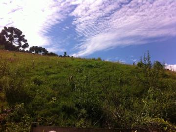 Terrenos  Monte Verde R$65.000,00