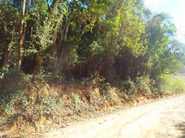 Terrenos Monte Verde Consulte-nos