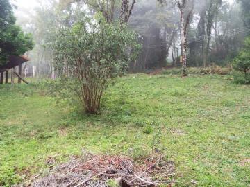Terrenos  Monte Verde R$159.000,00