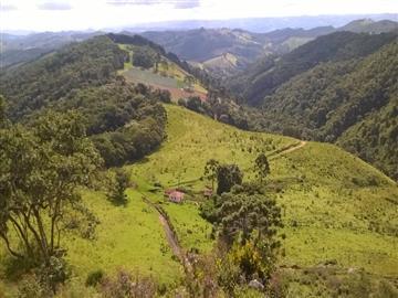 Sítios  Monte Verde R$1.500.000,00