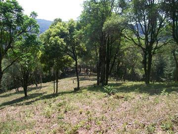 Terrenos  Monte Verde R$400.000,00
