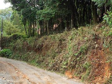 Terrenos Monte Verde