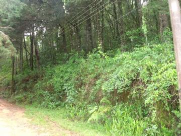 Terrenos  Monte Verde R$160.000,00